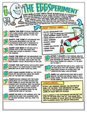 EggSperiment activity sheet - Pediatric Dentist in Cary, NC